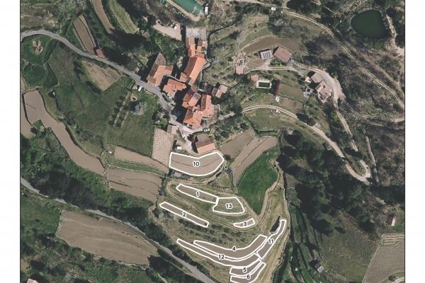 cartographie agriculture SIG GPS carte carto plan parcelle agricole surface superficie couleur culture cadastre exploiation photo orthophotos aériennes