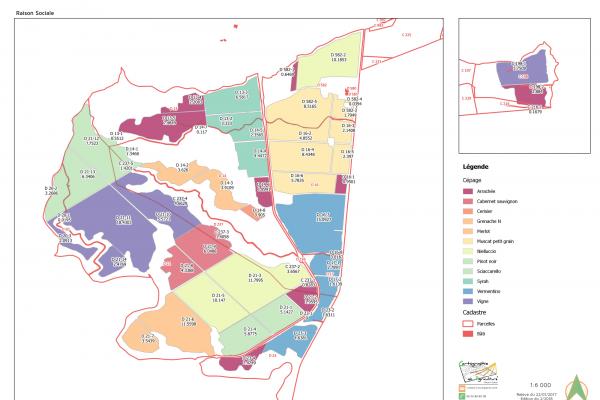 cartographie agriculture SIG GPS carte carto plan parcelle agricole surface superficie culture cadastre exploiation viticulture vigne cépage code CVI casier viticole informatisé